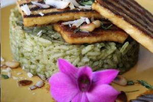 טופו צרוב על אורז ירוק