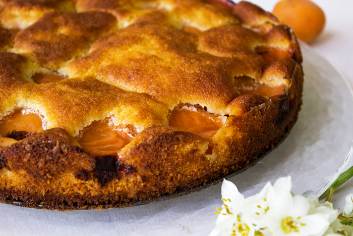 אורה קורן עוגת מישמישים שיכורים קלה 3