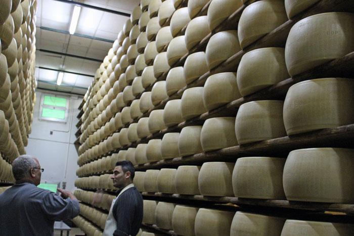 ייצור פרמזן במודנה, איטליה