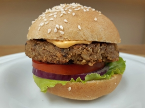 HAMBURGER1.jpg-WEB